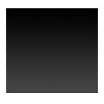 Rasdir logo